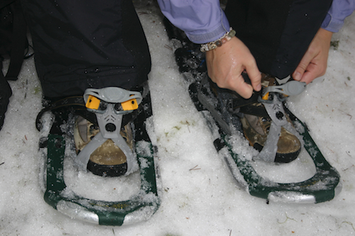 Have snow shoes, will travel
