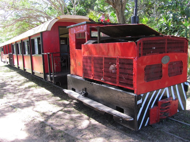 Sugar cane train