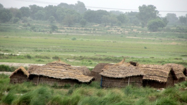 Thatched huts on the outskirts of Delhi