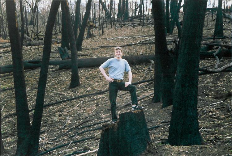 Burnt trees near Kosciusko